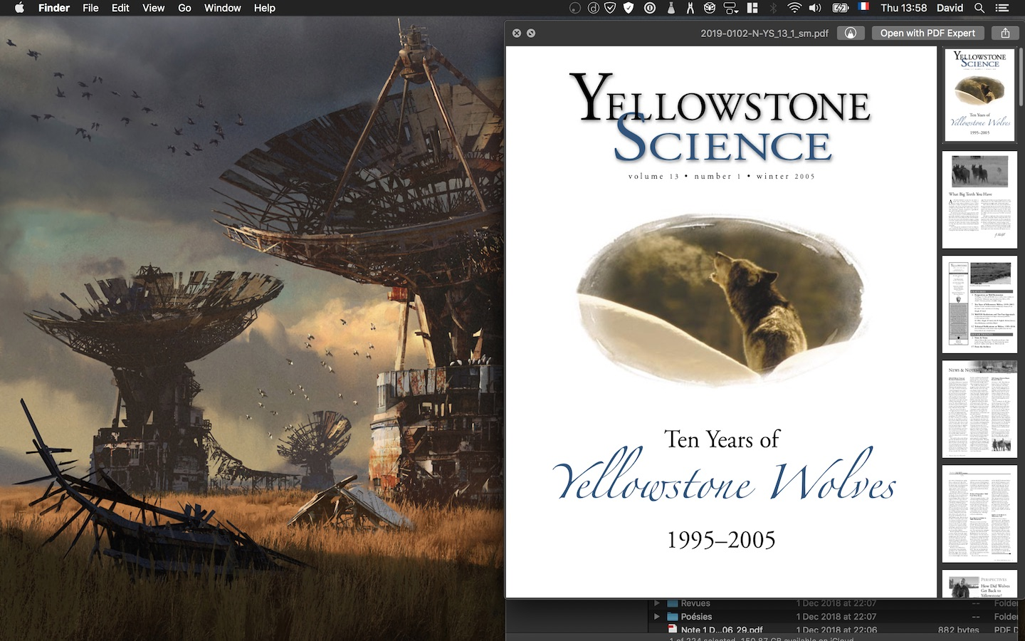10 Years of Yellowstone Wolves, cover